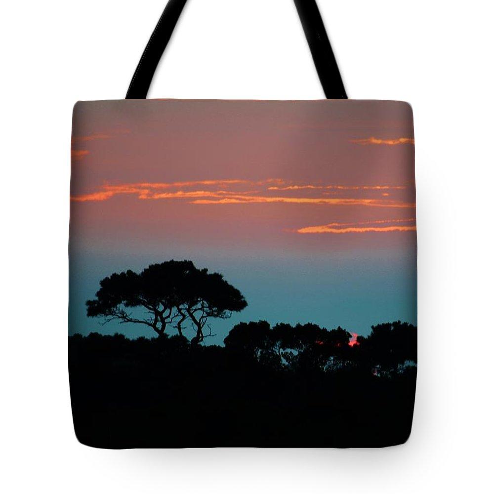 Assateague Island Tote Bag featuring the photograph Savannah Sunset by William Bartholomew