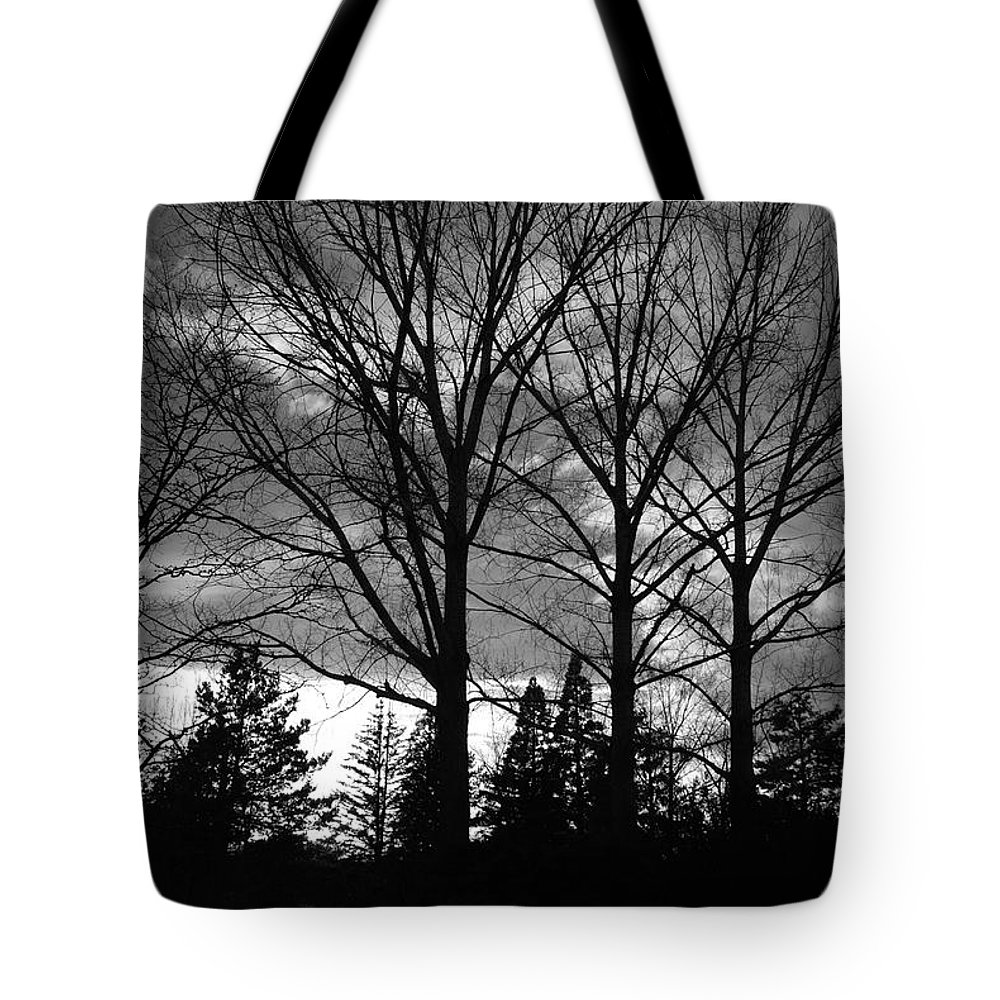 Black And White Tote Bag featuring the photograph Scenic State Capital by Rob Hans