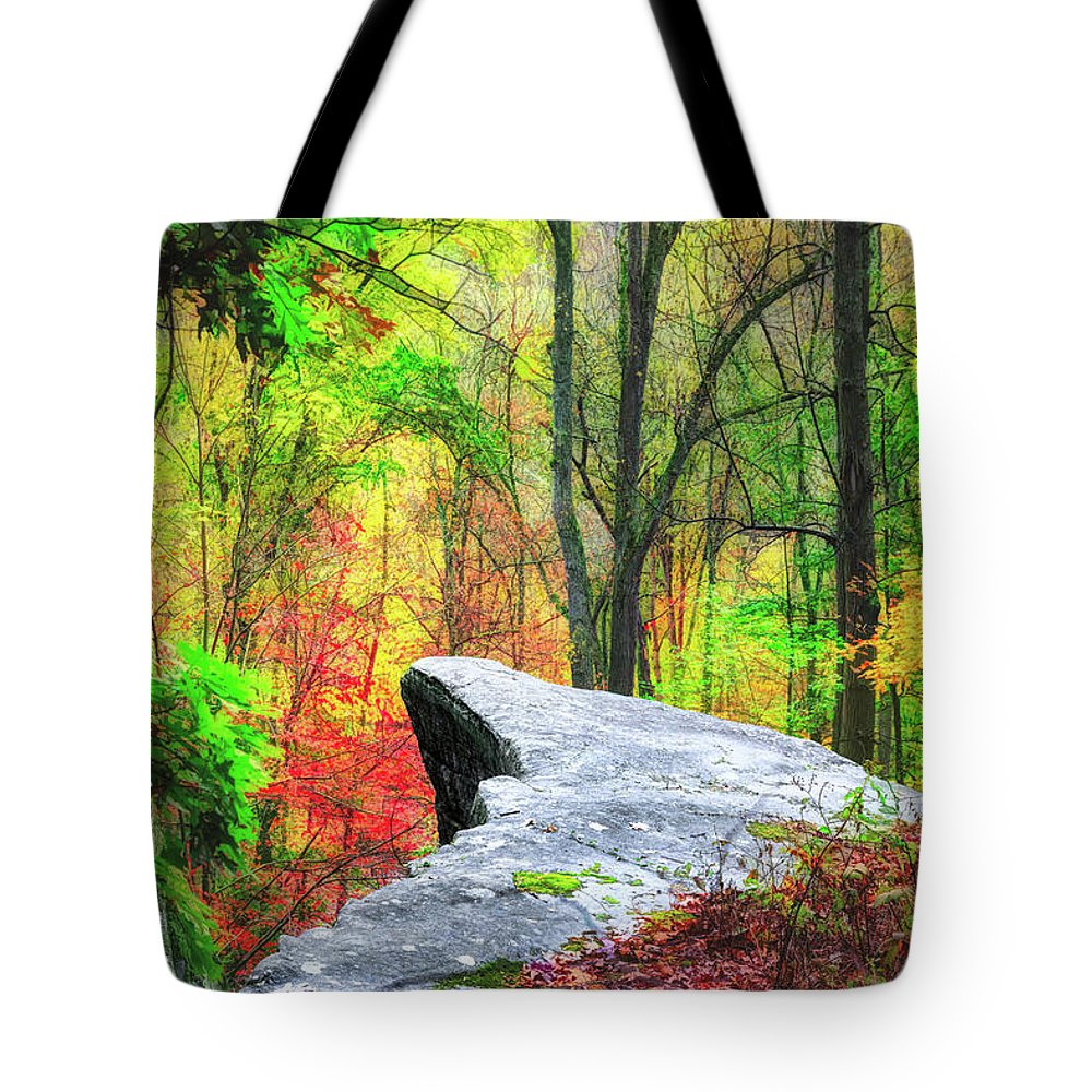 Rock Tote Bag featuring the photograph Scenic View by Tom Mc Nemar