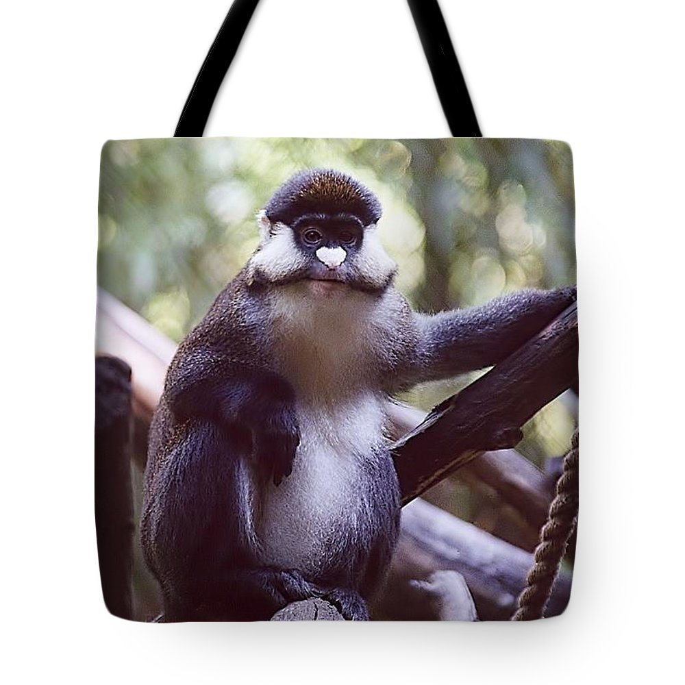 Animals Tote Bag featuring the photograph Schmidts Guenon by Jan Amiss Photography
