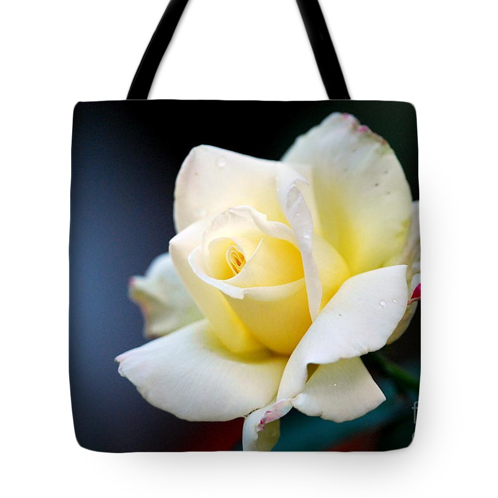 Rose Tote Bag featuring the photograph Scottish Rose by Carl Salonen