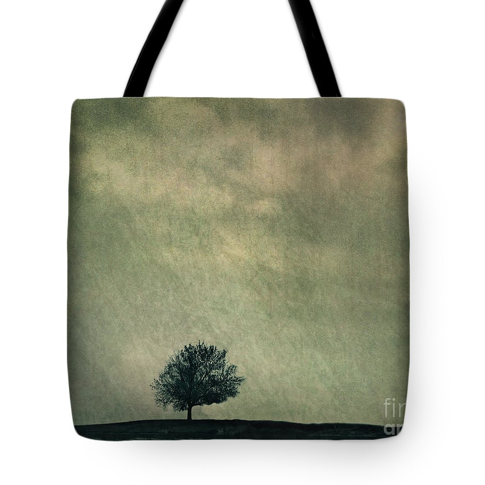 Blue Tote Bag featuring the photograph Screaming At The Top Of My Voice by Dana DiPasquale