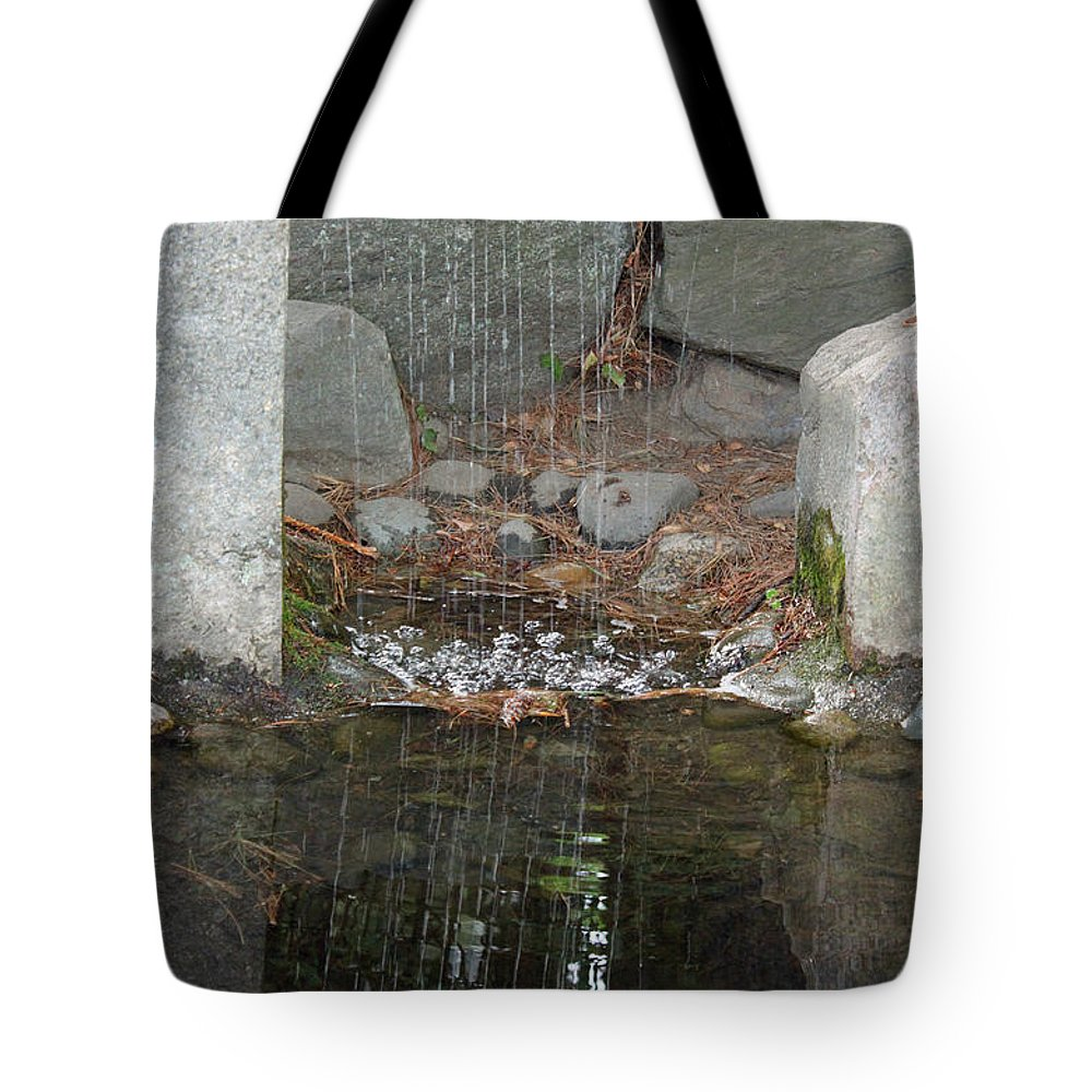 Sculpture Garden Tote Bag featuring the photograph Sculpture Garden II by Suzanne Gaff