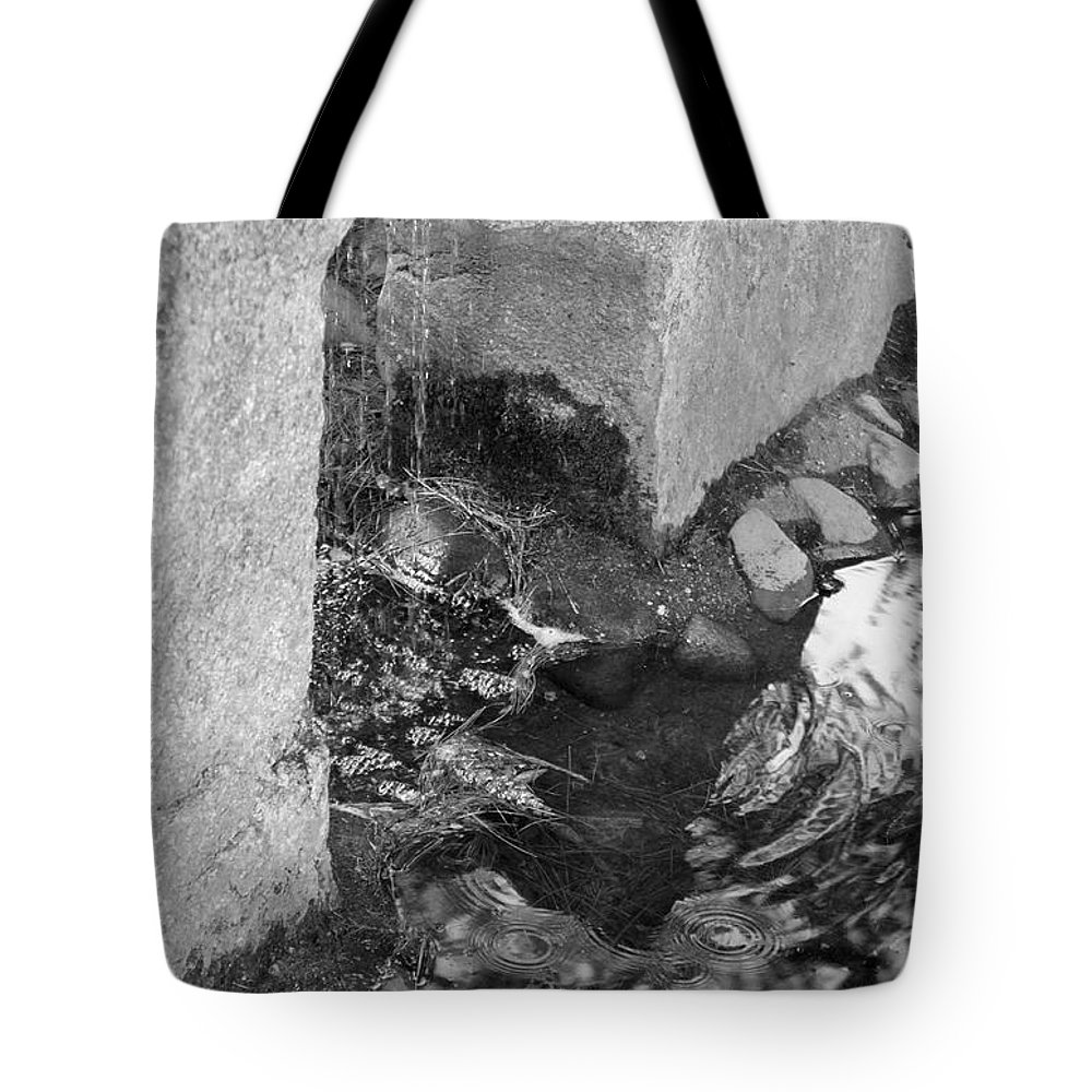 Sculpture Garden Tote Bag featuring the photograph Sculpture Garden IIi In Black And White by Suzanne Gaff