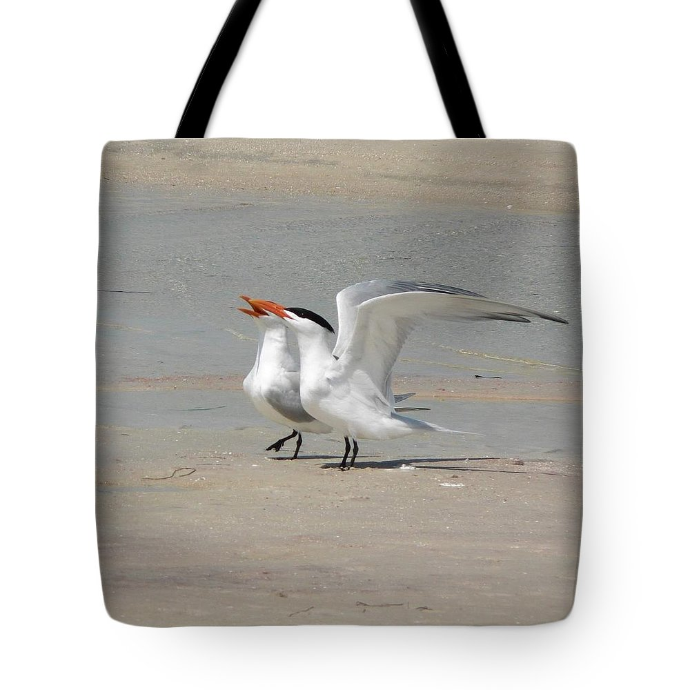 Sea Tote Bag featuring the photograph Sea Bird Song by Melissa Haney