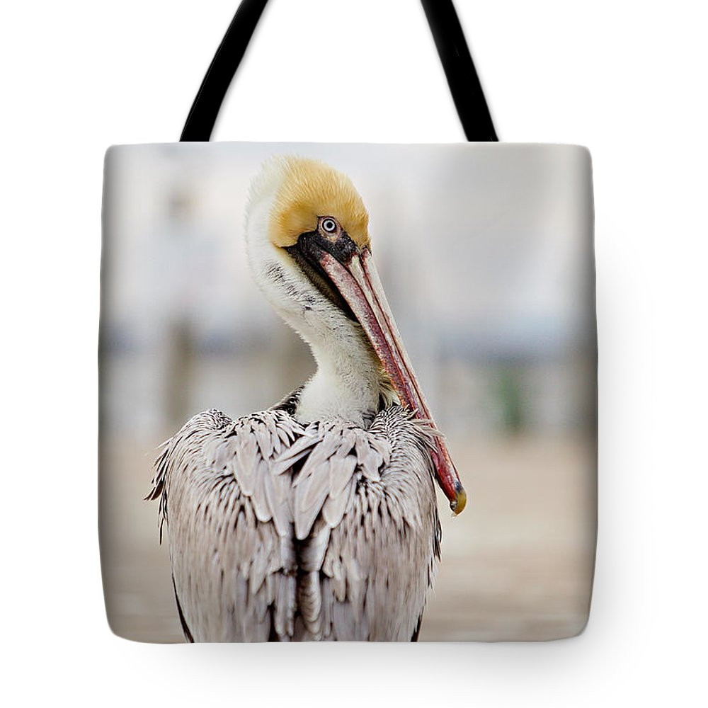 2016 Tote Bag featuring the photograph Sea Chicken by Lisa Walsh