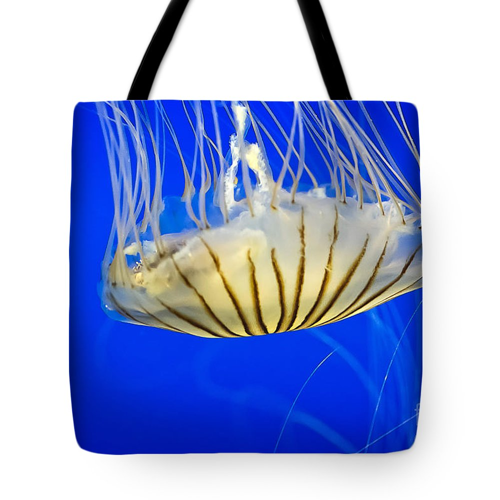 Sea Tote Bag featuring the photograph Sea Nettle by Michael Shake
