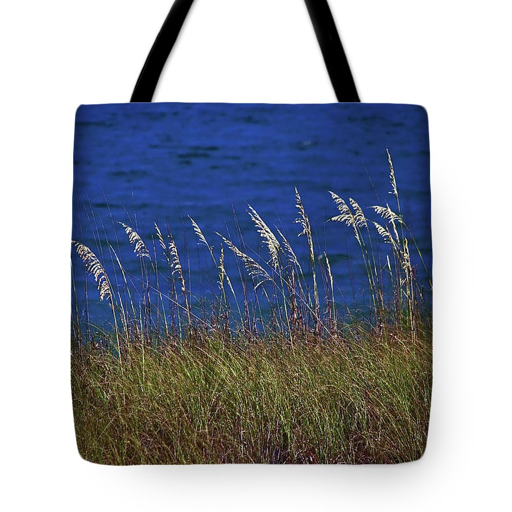 Water Tote Bag featuring the photograph Sea Oats by David Campbell