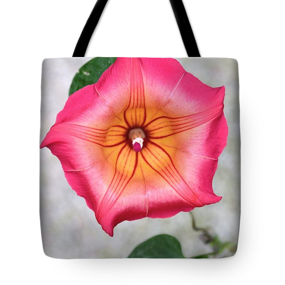 Sea Star Flower Tote Bag featuring the photograph Sea Star Flower by Darla Wood