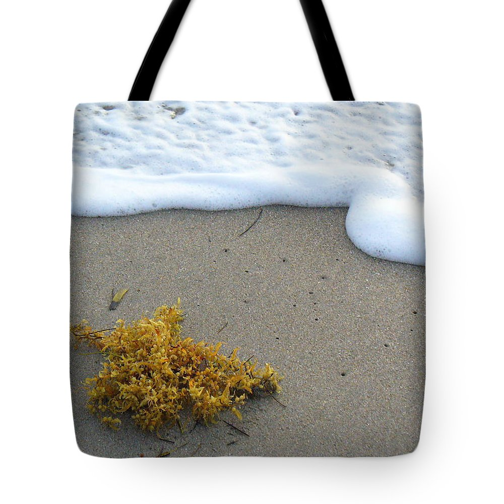 Foam Tote Bag featuring the photograph Seafoam And Seaweed by Peggy King