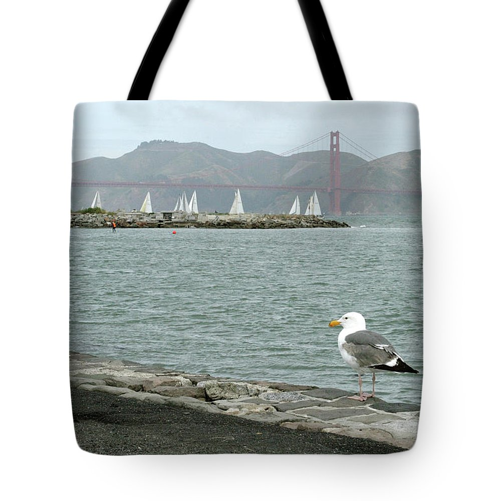 Golden Gate Bridge Tote Bag featuring the photograph Seagull And Golden Gate Bridge by Masha Batkova