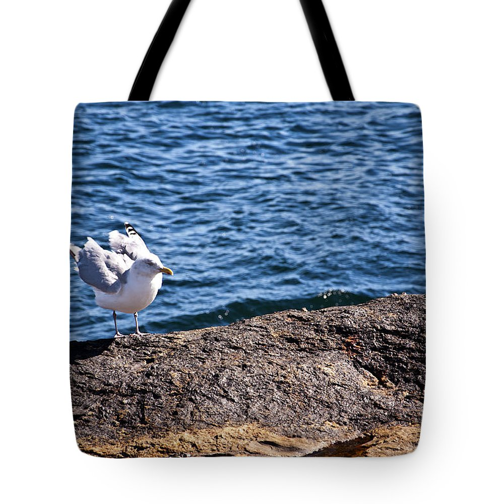 Seagull Tote Bag featuring the photograph Seagull by Glenn Gordon