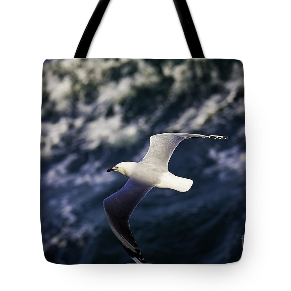 Seagull Tote Bag featuring the photograph Seagull In Wake by Sheila Smart Fine Art Photography