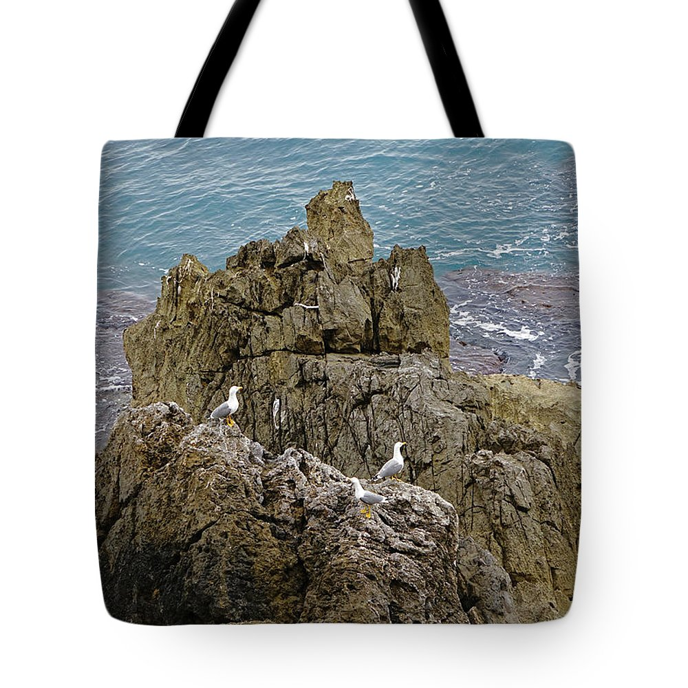 Cefalu Tote Bag featuring the photograph Seagull Island On Cefalu In Sicily by Richard Rosenshein