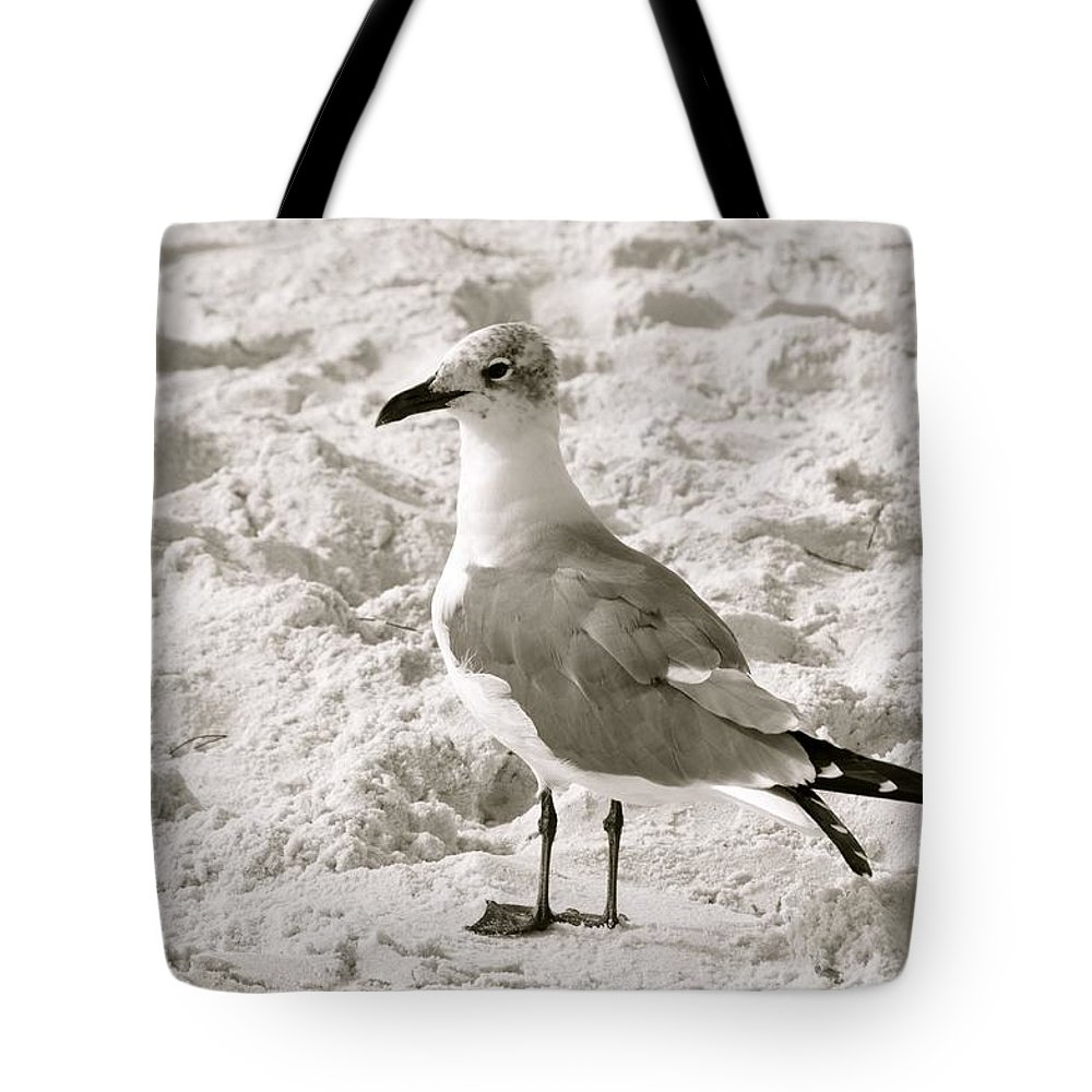 Bird Tote Bag featuring the photograph Seagull by Rachel Young