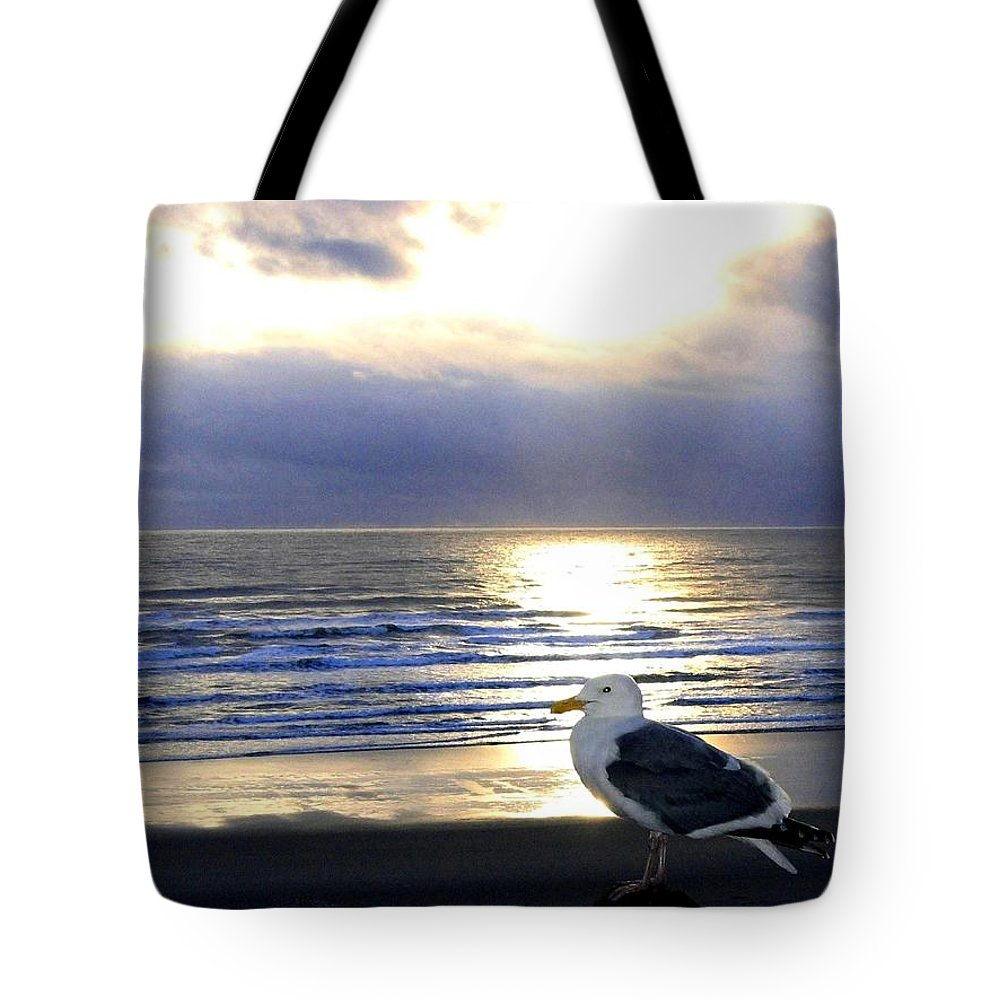Seagull Tote Bag featuring the photograph Seagull Sentinel by Will Borden