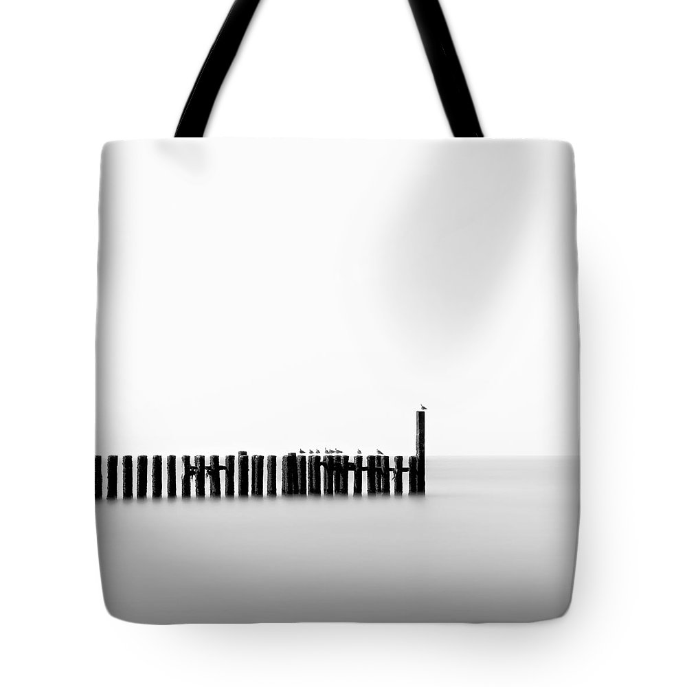 Groynes Tote Bag featuring the photograph Seagulls And Groynes by Dave Bowman