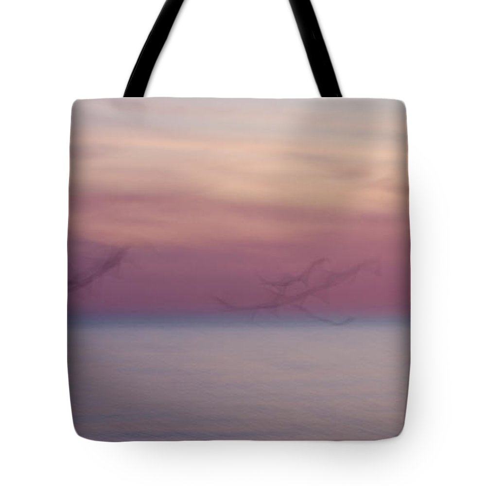 3scape Tote Bag featuring the photograph Seagulls In Motion by Adam Romanowicz