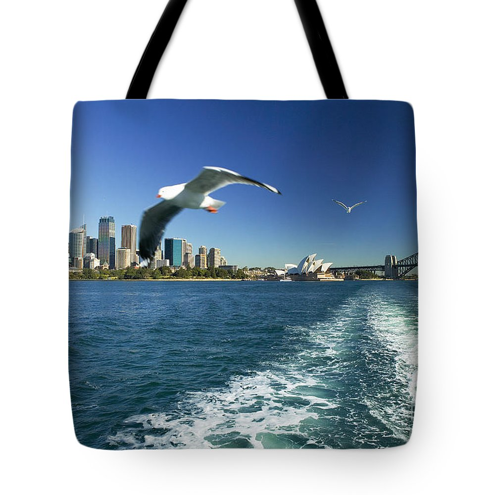 Air Art Tote Bag featuring the photograph Seagulls Over Sydney Harbor by Dana Edmunds - Printscapes