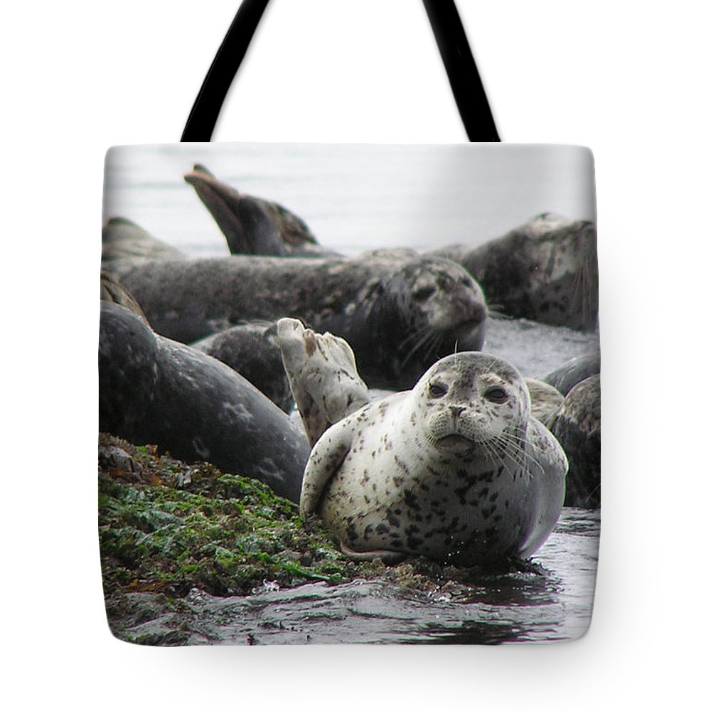 Seals Tote Bag featuring the photograph Seal Rock by Louise Magno