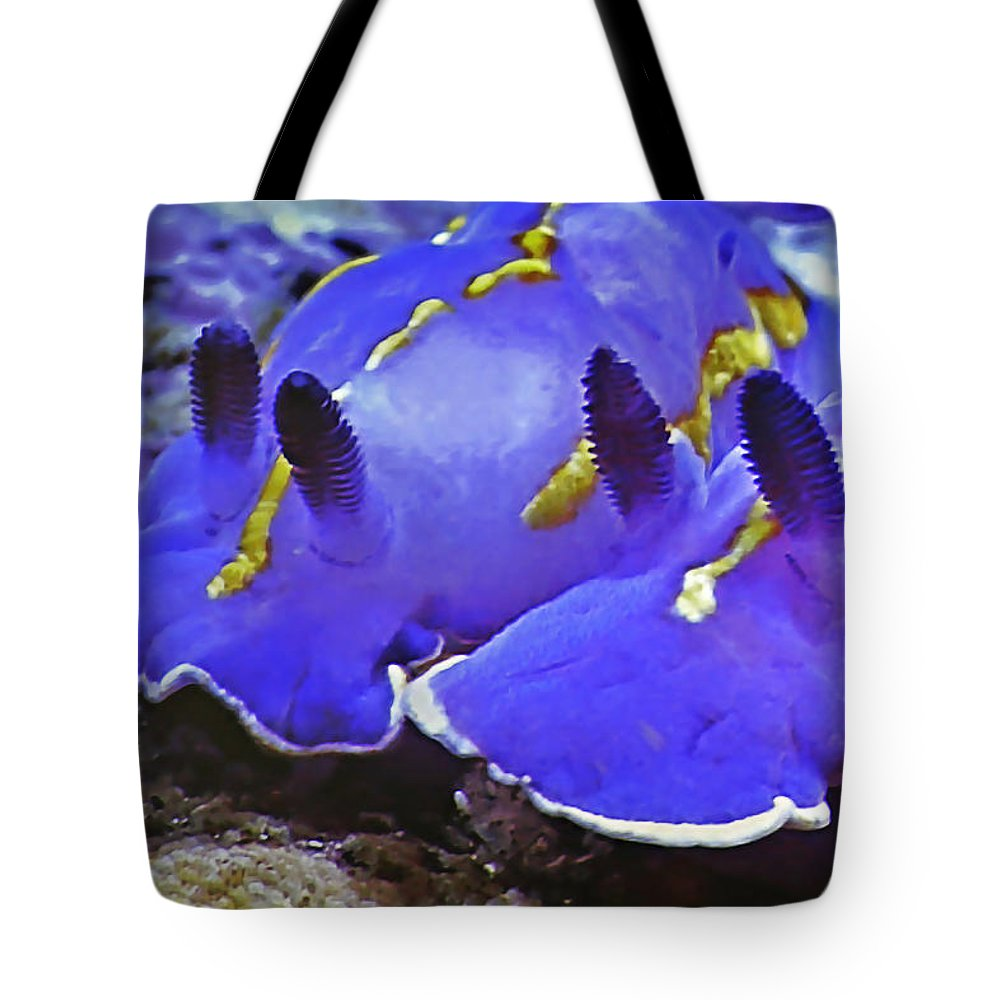 Ocean Tote Bag featuring the photograph Sealife Underwater Snails by Christine Till