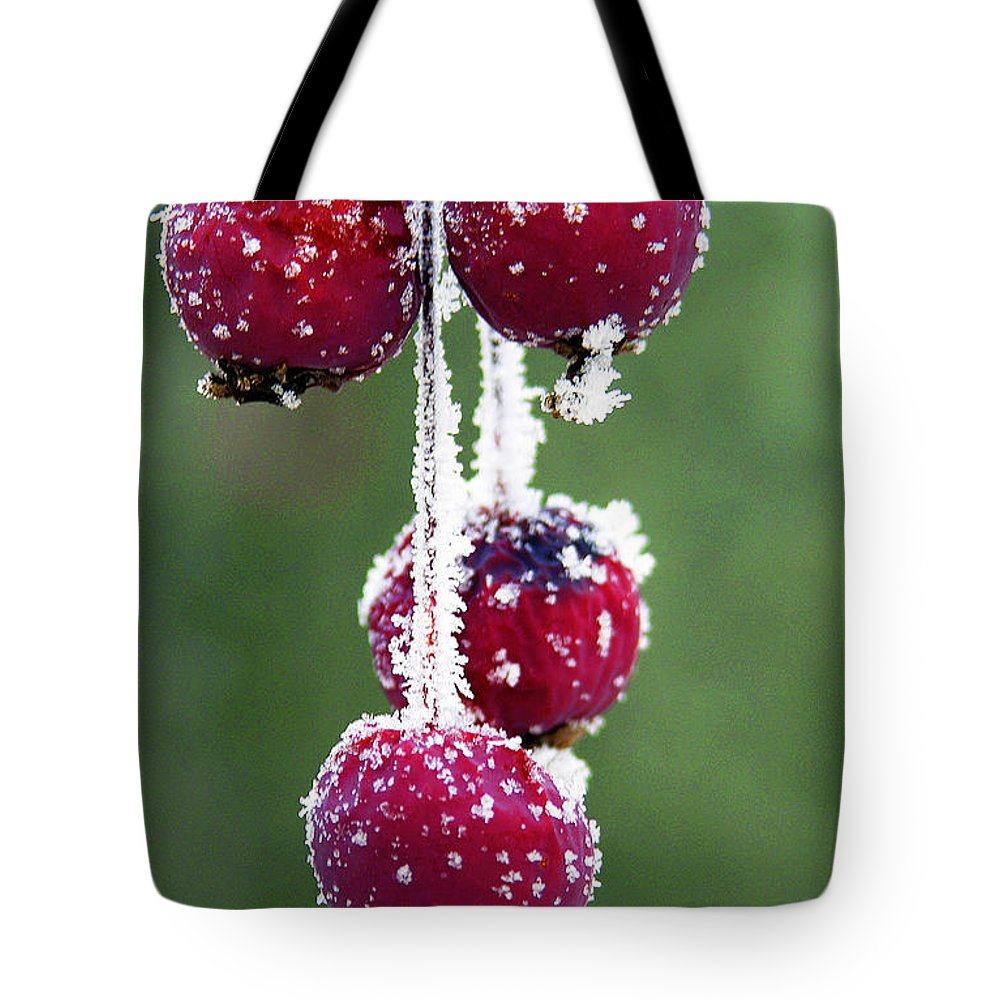 Berries Tote Bag featuring the photograph Seasonal Colors by Marilyn Hunt