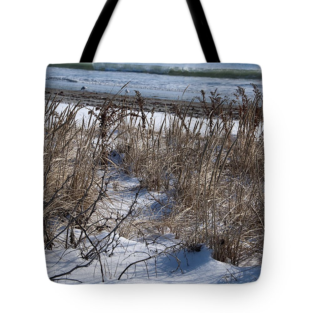 Beach Tote Bag featuring the photograph Seascape In Winter by Steven Natanson