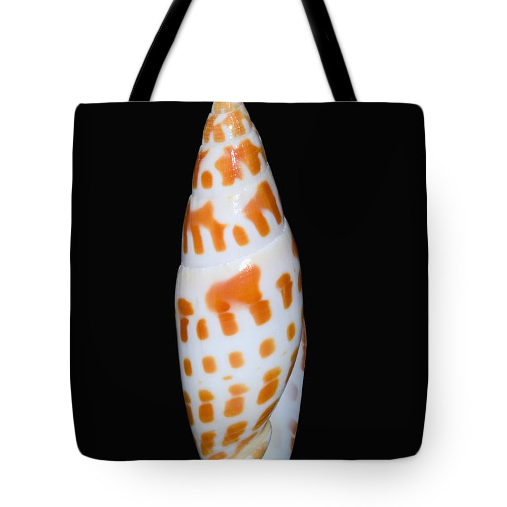 Assortment Tote Bag featuring the photograph Seashell In Fishnet by Bill Brennan - Printscapes