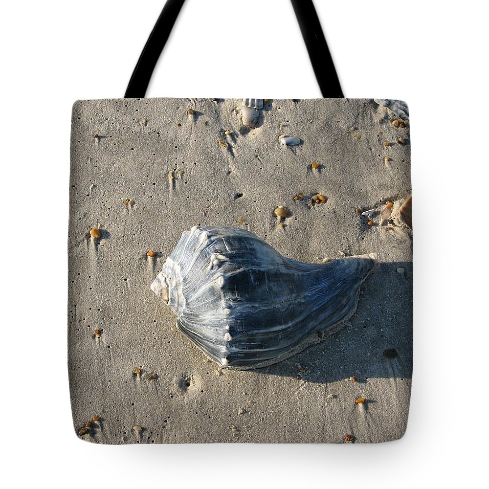 Seashell Tote Bag featuring the photograph Seashell by Stacey May