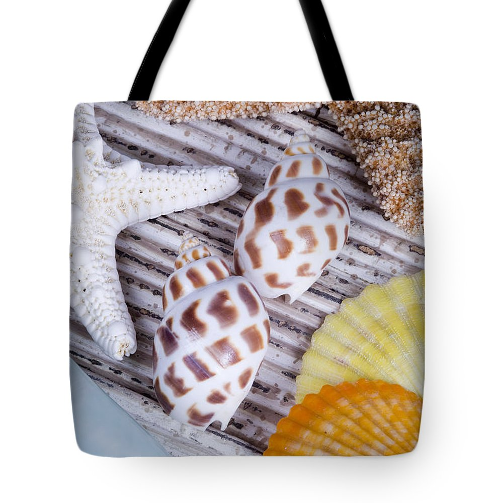Assortment Tote Bag featuring the photograph Seashells And Starfish by Bill Brennan - Printscapes