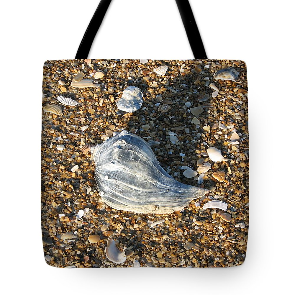Seashore Tote Bag featuring the photograph Seashells On The Seashore by Stacey May