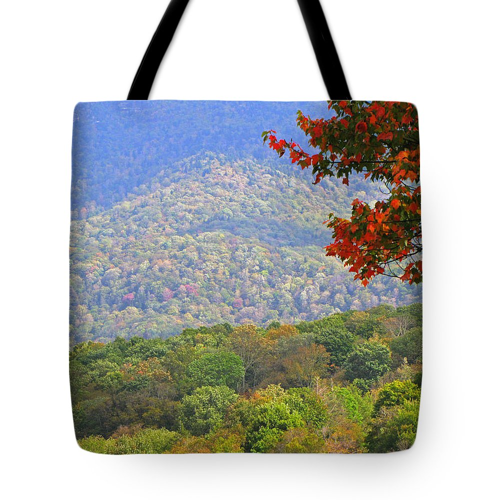 Fall Tote Bag featuring the photograph Seasonal Color by Gary Adkins
