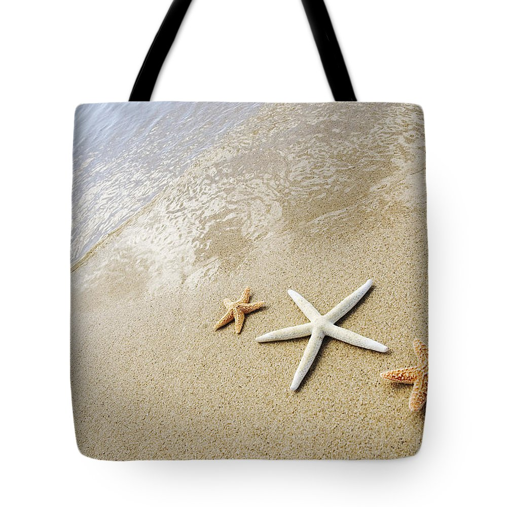 Afternoon Tote Bag featuring the photograph Seastars On Beach by Mary Van de Ven - Printscapes