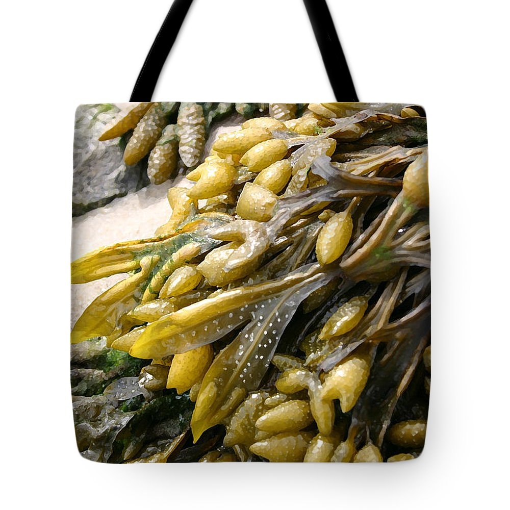 Seascape Tote Bag featuring the photograph Seaweed by Mary Haber