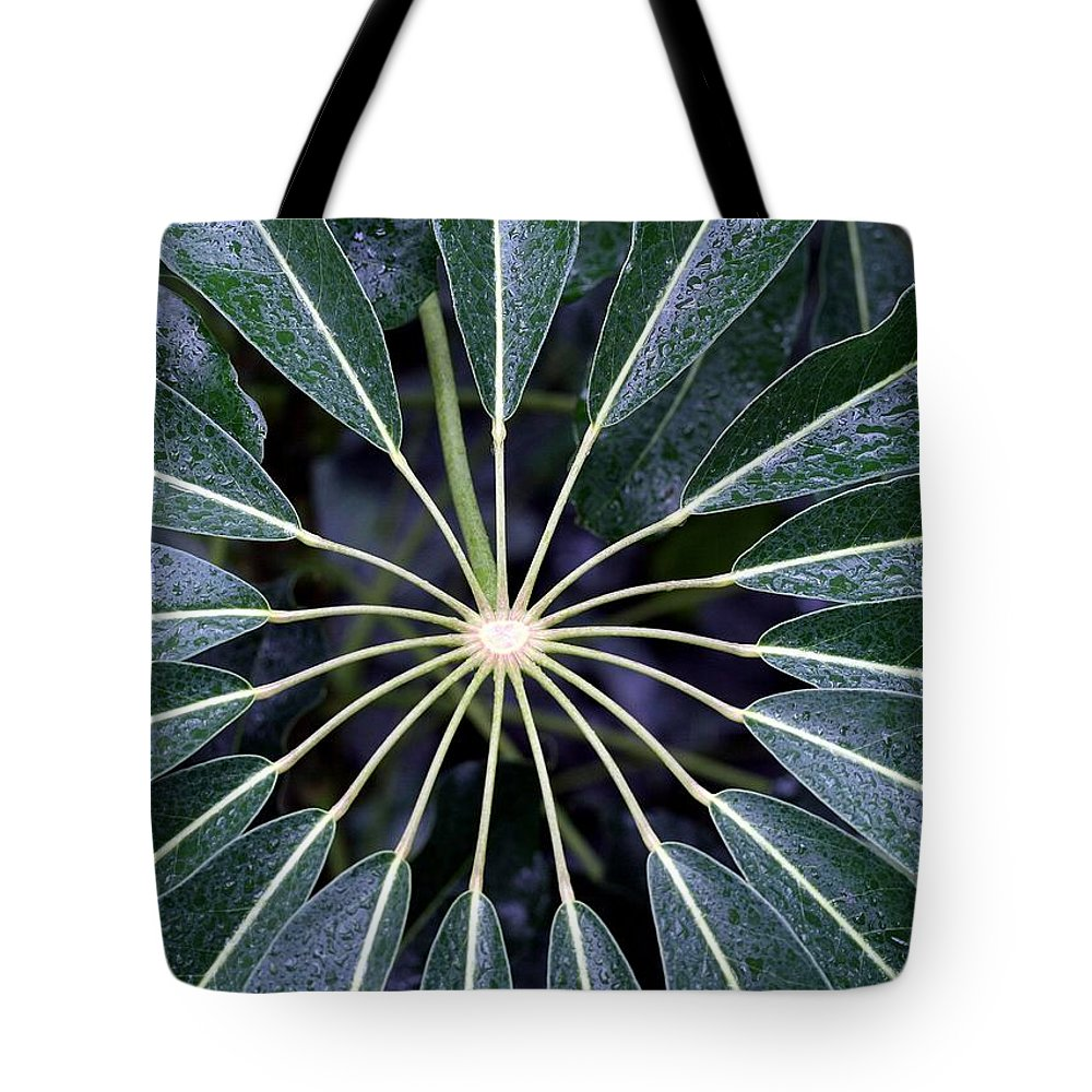 Plant Tote Bag featuring the photograph Secret by Mitch Cat