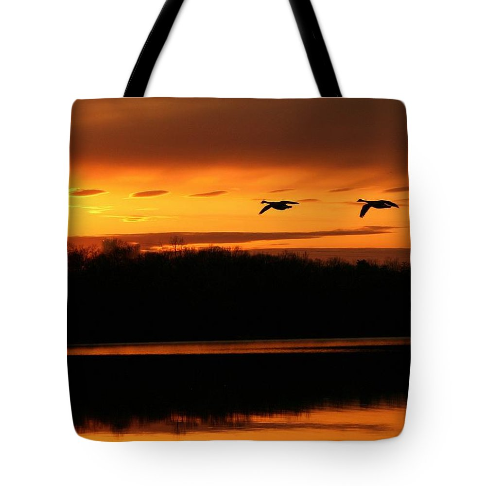 Landscape Tote Bag featuring the photograph See Light by Mitch Cat
