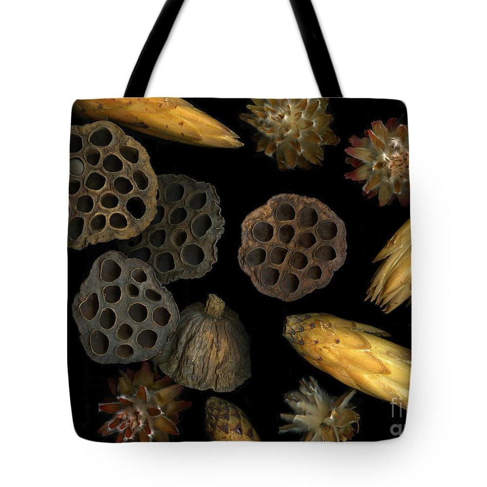 Pods Tote Bag featuring the photograph Seeds And Pods by Christian Slanec