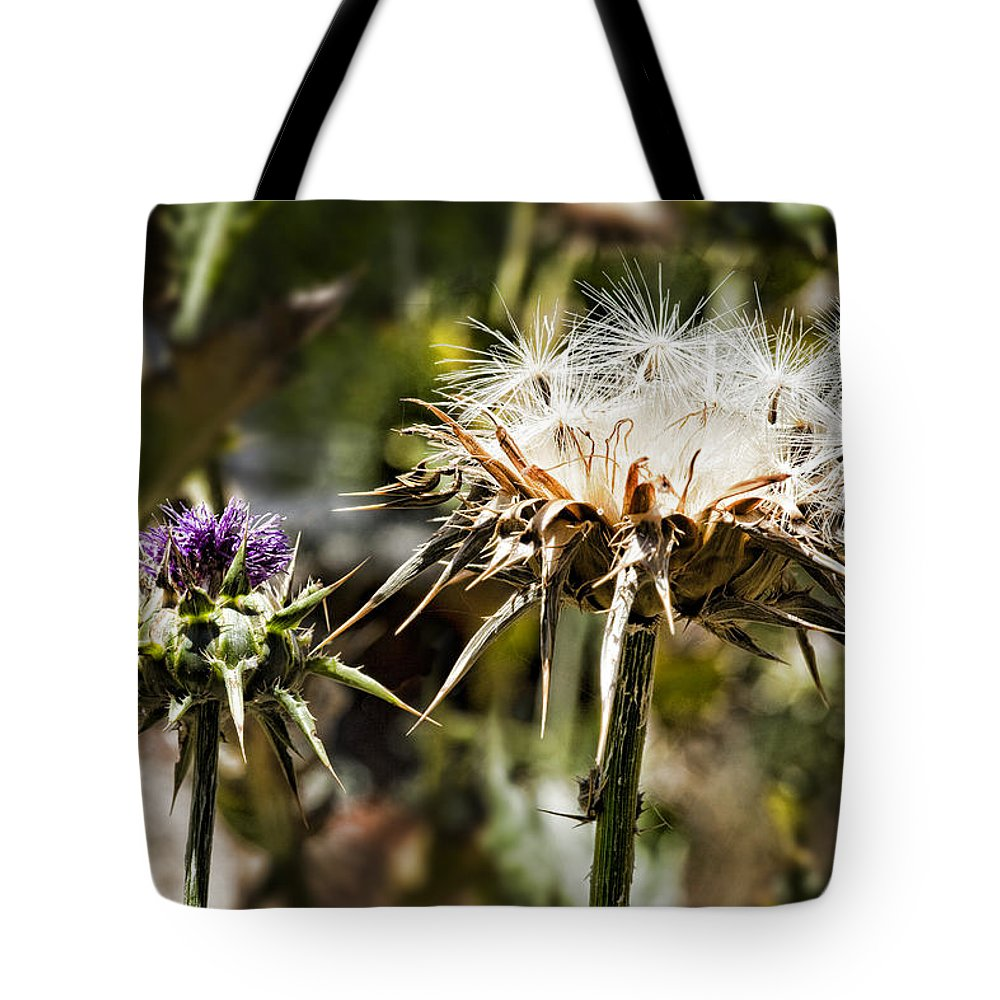 Artichoke Thistle Tote Bag featuring the photograph Seedy Neighborhood by Kelley King