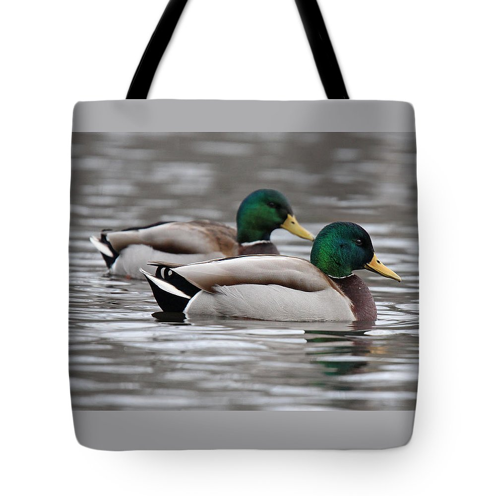 Mallard Tote Bag featuring the photograph Seeing Double by Sue Feldberg