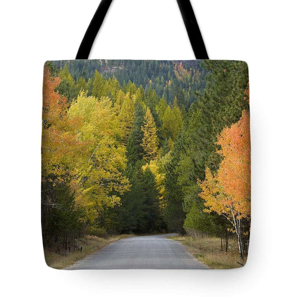 Trees Tote Bag featuring the photograph Selkirk Color by Idaho Scenic Images Linda Lantzy