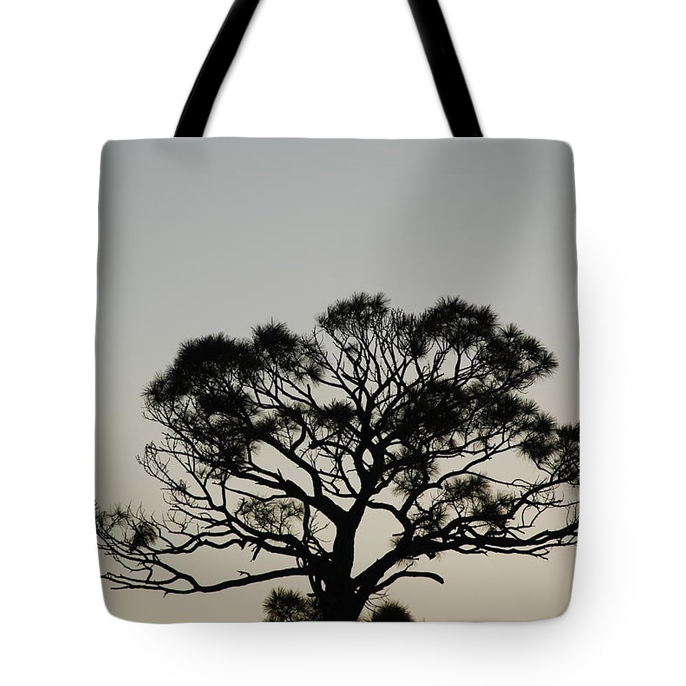 Tree Tote Bag featuring the photograph Senset Trees by Rob Hans