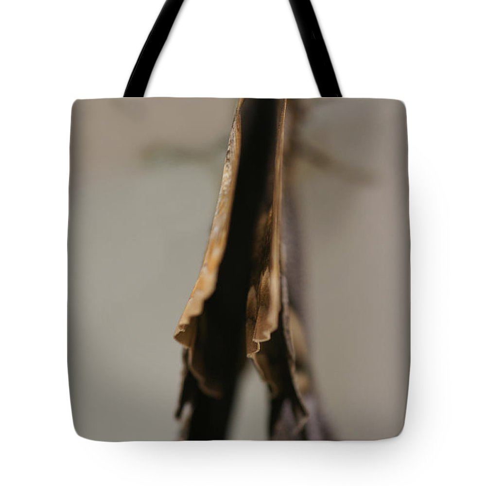 Butterfly Tote Bag featuring the photograph Sensitive Dependence by Linda Shafer