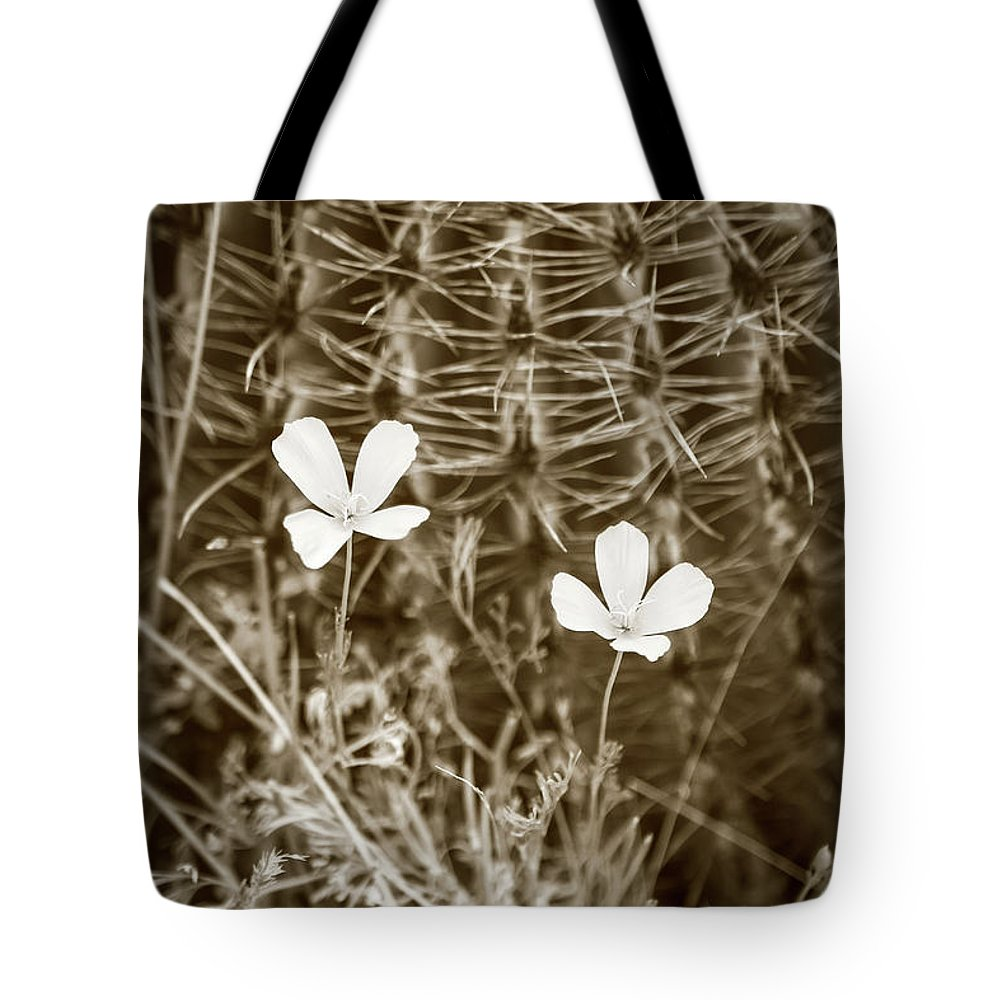 Arid Tote Bag featuring the photograph Sepia Souls by Martina Schneeberg-Chrisien