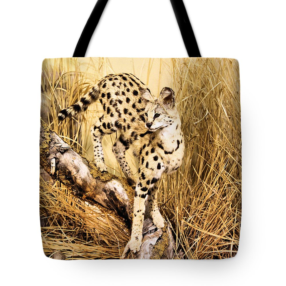 Serval Tote Bag featuring the photograph Serval by Kristin Elmquist