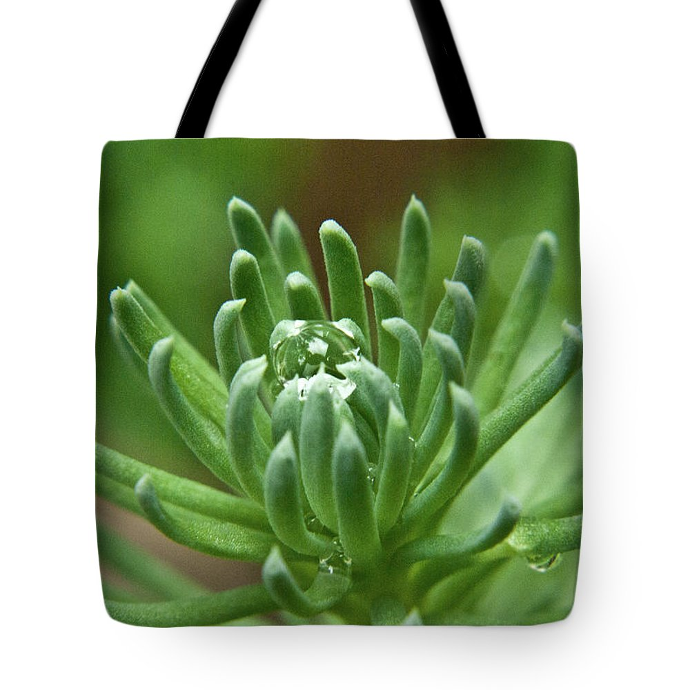 Setum Tote Bag featuring the photograph Setum With Crystal Ball by Douglas Barnett