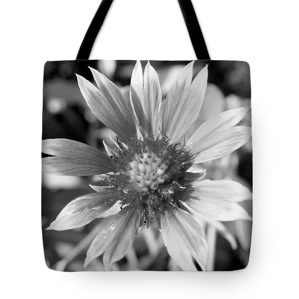 Shades Of Gray Tote Bag featuring the photograph Shades Of Gray Flower By Earl's Photography by Earl Eells a