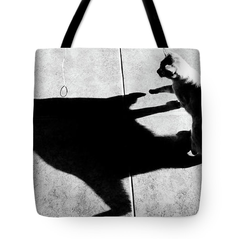 Cat Tote Bag featuring the photograph Shadow Cat by Scott Sawyer