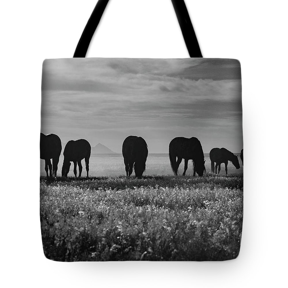 Nikon Tote Bag featuring the photograph Shadow Dancer by Nicole Markmann Nelson