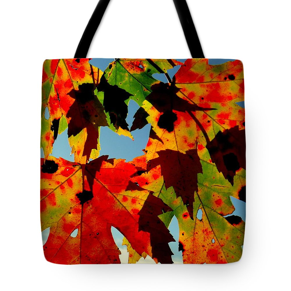 Shadow Play Tote Bag featuring the photograph Shadow Play by Ed Smith