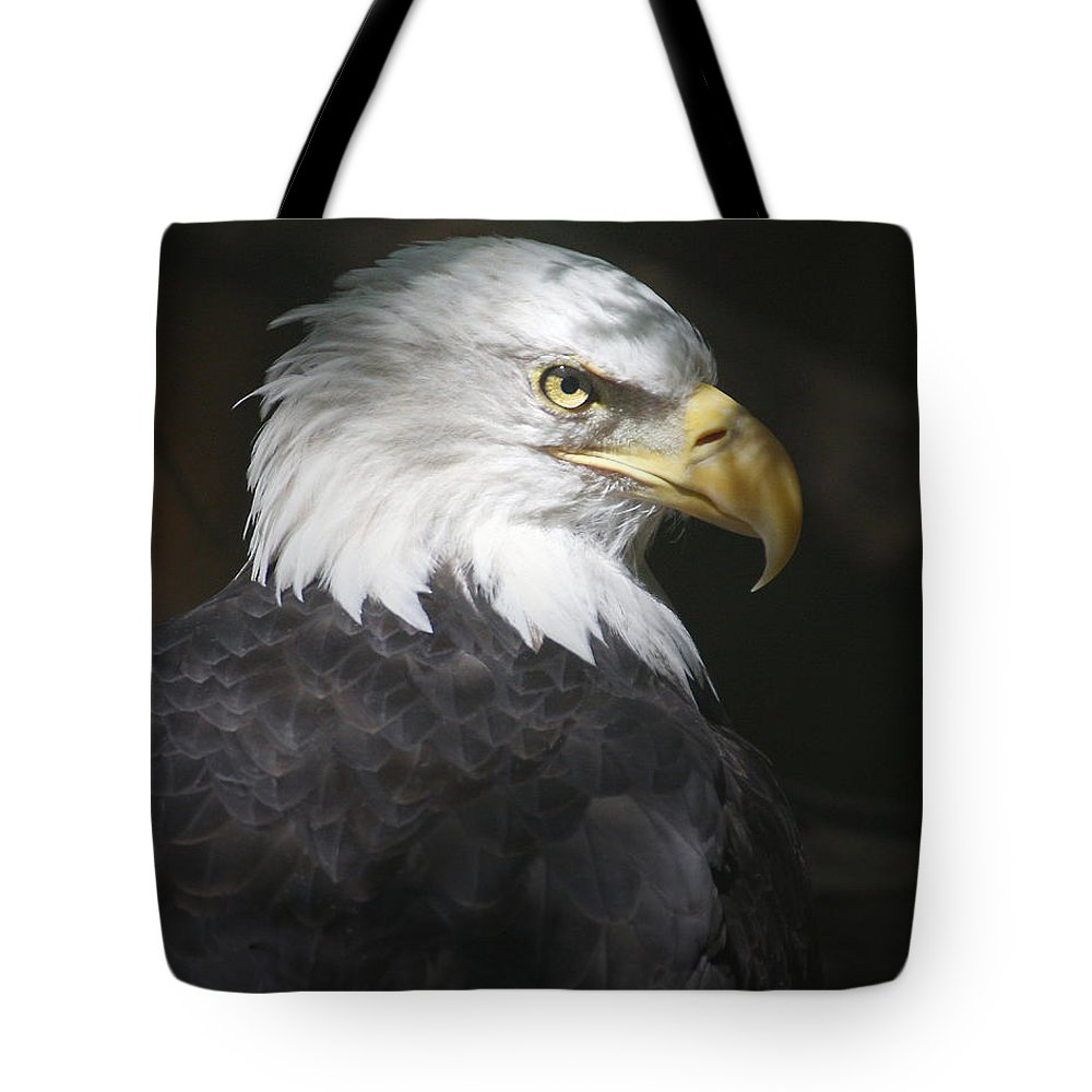 Eagle Bird Shadow Portrait Hawk Tote Bag featuring the photograph Shadow Raptor by Winston Rockwell